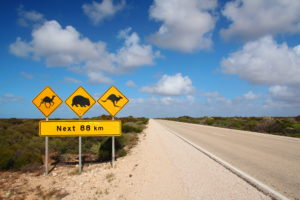 fundit visa recherche financement australie
